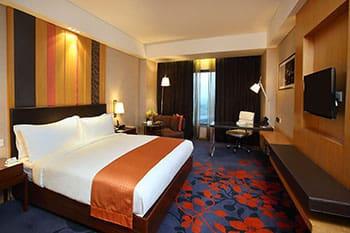 Holiday Inn New Delhi
