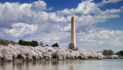 Destination DC Monuments Destination DC visitation numbers down by 50 percent in 2020