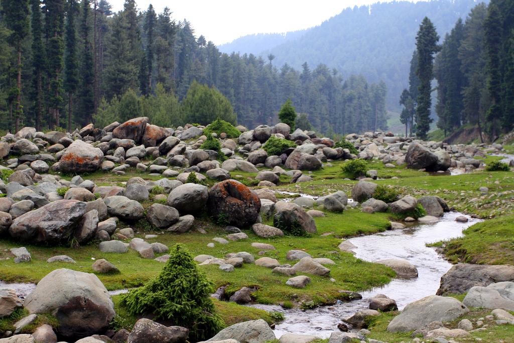 71262 8154 Extraordinary adventure activities in Jammu