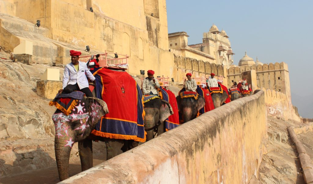 6 Things To Do In Jaipur