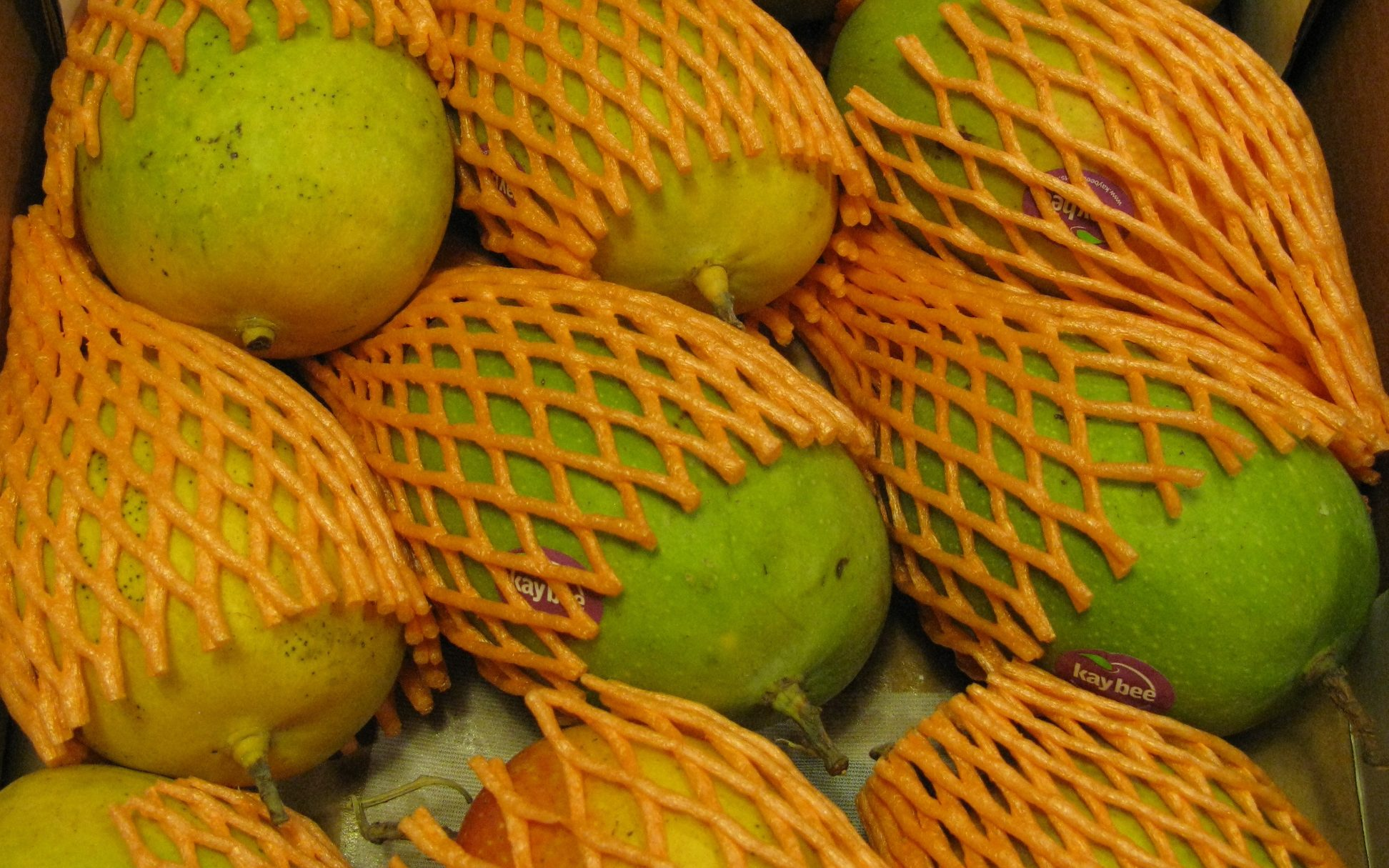 Kesar Mango Andrew Huff edited Rich and sweet mangoes of Maharashtra