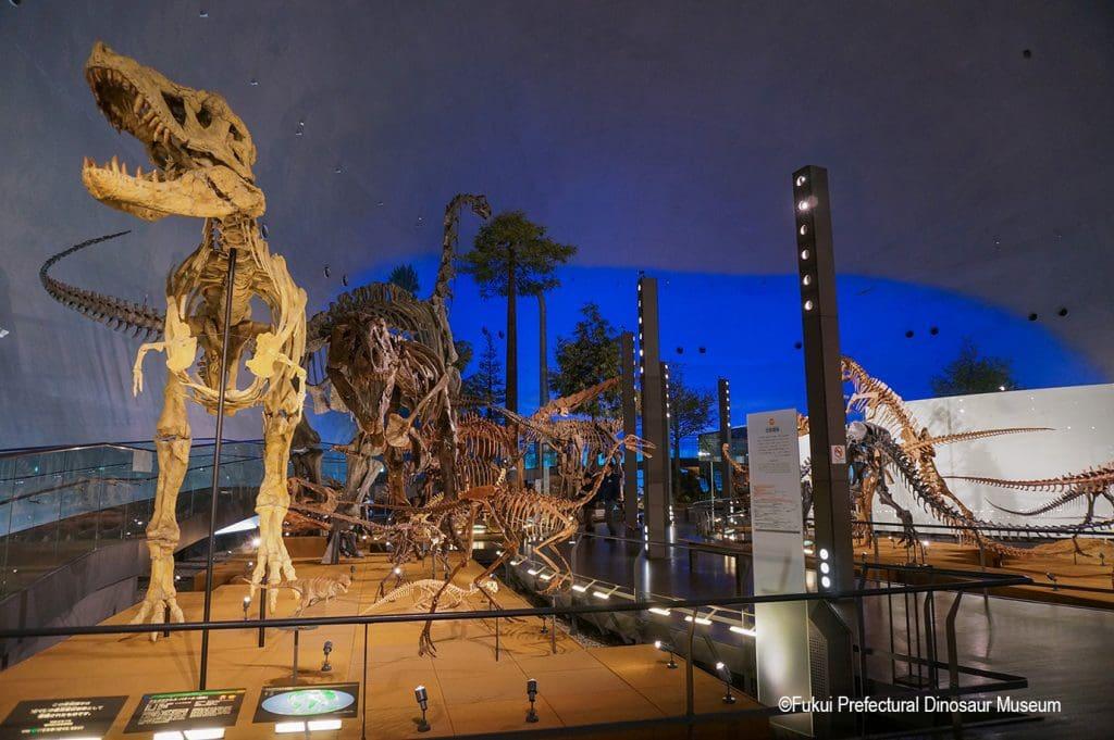 Japan The Fukui Prefectural Dinosaur Museum