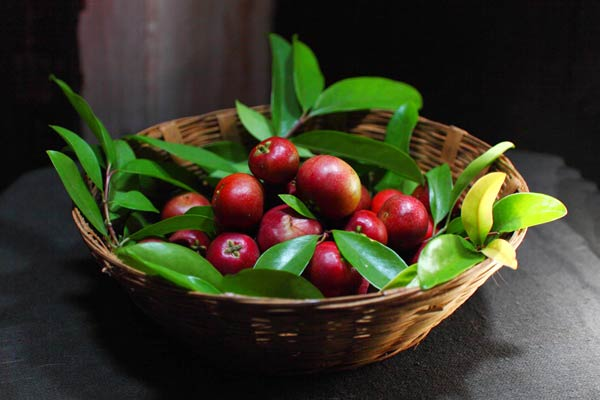 Kokum 5 delicious fruits of Maharashtra that are a must-taste for visitors