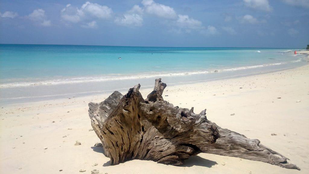 Andaman and Nicobar Islands Kalapathar Beach