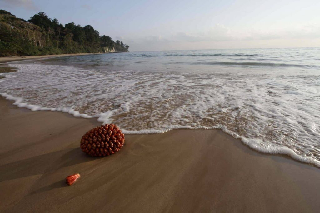 Baludera Beach, Baratang (Andaman and Nicobar Islands) - one of the lesser-explored beaches in India